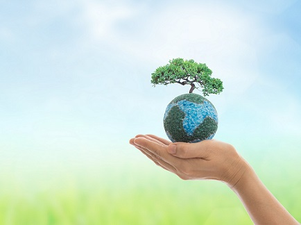 Protecting the environment while building customer loyalty